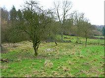 SU8216 : Ruins of Monkton Farm by Simon Carey