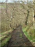 SE0422 : Stansfield Mill  Lane by Nigel Homer