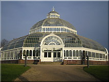 SJ3787 : Liverpool: The Palm House, Sefton Park, L17 by Nigel Cox
