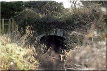 J1962 : Old Bridge by Wilson Adams