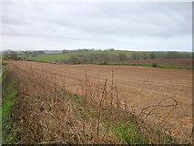 SX3158 : Fields adjacent to Wilton Farm by BB
