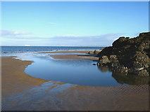 NT4884 : Black Rocks, Gullane Bay by Lisa Jarvis