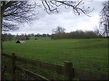 SU7077 : Farmland near Dyson's Wood Farm by Graham Horn