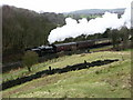 SD7919 : Steam train - East Lancs Railway by liz dawson