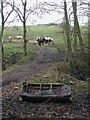 SE1524 : Rock Hole, Thornhills by Paul Glazzard