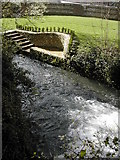 ST6601 : The mill race on the River Cerne, Cerne Abbas by Peter Beaven