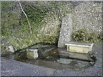 ST6601 : St. Augustine's Well, Cerne Abbas by Peter Beaven