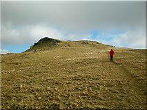 SH6543 : Below Summit of Moelwyn Bach by John Lynch