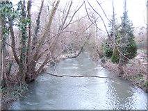 SU1898 : River Coln by Jonathan Billinger