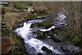 SD5299 : River Sprint by mauldy
