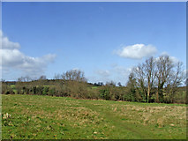 TQ3097 : Hog Hill taken from footpath from Trentwood, Enfield by Christine Matthews