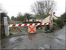 R4446 : Level Crossing, Limerick-Foynes Railway, Copay, Co. Limerick by Peter Gerken