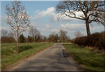 TM3173 : One end of Cratfield Lane by Robert Edwards