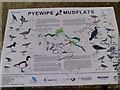 TA2611 : Pyewipe Mudflats Bird Guide by Simon Fidler