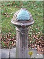 SP3277 : Detail of drinking fountain, Top Green by E Gammie