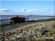 TQ8068 : Derelict Barge, Riverside Country Park by Penny Mayes