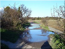 TQ8068 : Flooded causeway, Horrid Hill by Penny Mayes