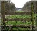 SJ8520 : A distant Bridge by stephen betteridge