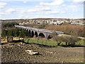 SE1719 : Bradley Viaduct, Bradley / Kirkheaton by Humphrey Bolton