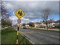 O2226 : Clonkeen Road, Blackrock by Sarah777