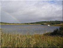 G7782 : Croagh Lough by Dennis Reynolds