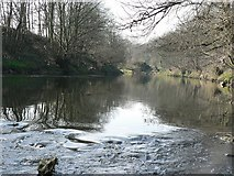 SE2436 : View of the River Aire upstream of the weir by Rich Tea