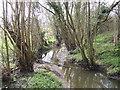 ST7488 : Saltmoors Ditch by Jonathan Billinger
