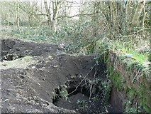 SE2436 : Excavations, former Horsforth Sewage Works by Rich Tea