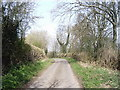 TQ9948 : The lane from Westwell to Challock by David Kemp