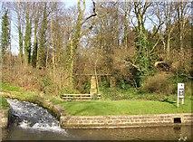 SE1039 : Pipe bridge over New Mill Gill, Bingley by Humphrey Bolton
