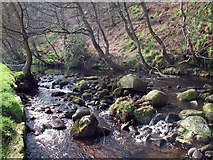 SE0023 : Cragg Brook by Paul Glazzard