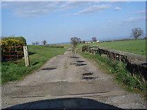SE2094 : Entrance track to Belmont Lane Farm by Frank Glover