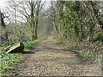 SE2436 : Rein Road by Rich Tea