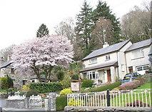 SH5848 : Houses in Caernarfon Road by Eric Jones
