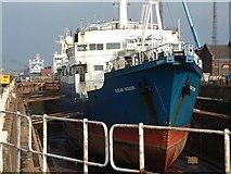 TA0827 : Drydock, William Wright Dock by George Robinson