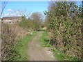 NT3397 : The former railway line by Sandy Gemmill