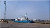 TA0827 : William Wright Docks, Hull by David Wright