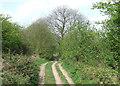 SO7692 : Byway, near Upper Farmcote, Shropshire by Roger  Kidd