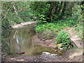 SO7689 : Wet Byway and Footbridge, Wooton, Shropshire by Roger  Kidd