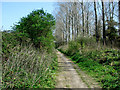 SY5885 : Disused Railway Track by Ray Beer