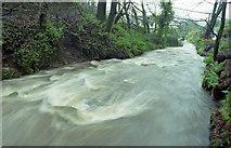 J3996 : River, Glenoe glen (4) by Albert Bridge