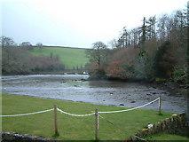 SW7724 : Gillan Creek by Robin Lucas
