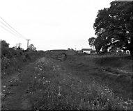 SU2562 : Freewarren Bridge, Kennet and Avon Canal by Dr Neil Clifton