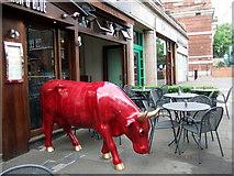 TQ2785 : Red bull by ceridwen