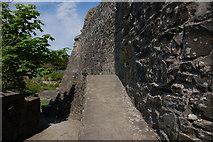 J1811 : Carlingford Castle (3) by Albert Bridge