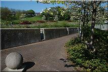 J2764 : Path by the River Lagan, Lisburn by Albert Bridge