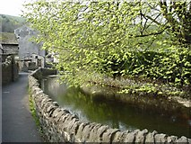 SK1482 : Castleton - footpath to Goose Hill beside stream by Mike Harris