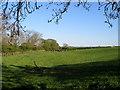 NZ3519 : Pasture land alongside Little Stainton Beck by Carol Rose