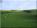 ST7356 : Stony Littleton Farm by Virginia Knight