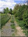 NU0320 : Public bridleway by Walter Baxter